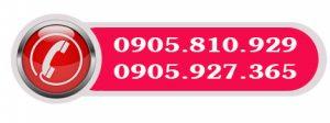 hotline da nang 365